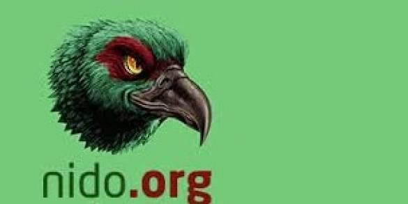 Photo of Alerta en redes por 'Nido.org' red chilena de acoso virtual contra mujeres.